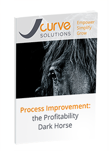Guide-Process-Improvement-the-Profitability-Dark-Horse.png